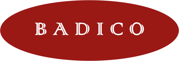 Logo Badico Trading GmbH